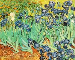 irises-vincent-van-gogh
