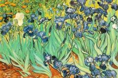 Irises,Vincent Van Gogh